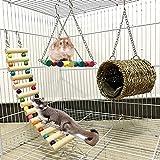 Ewolee Jouet de Hamster, Lot de 3 Jouets pour perroquets ou Chiens. Pont Échelles, Balançoire Jouet, Perché Hamac pour Hamster, écureuil, Furet, Cobaye, Perroquet Accessoire Bois Hamster