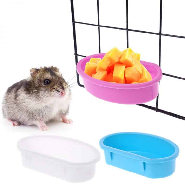 Mangeoire pour hamster