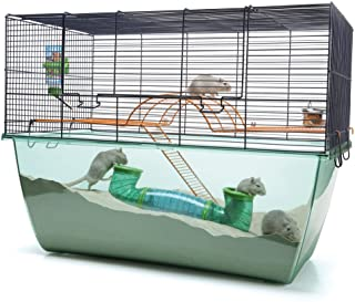 cage à hamster russe